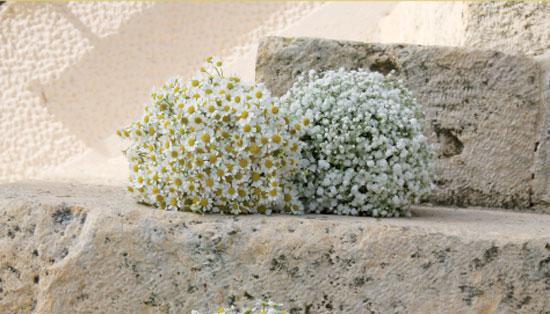 8adc2dfbd374 Γάμος με λουλούδια ελληνικής παραγωγής - Anthodetiki.gr